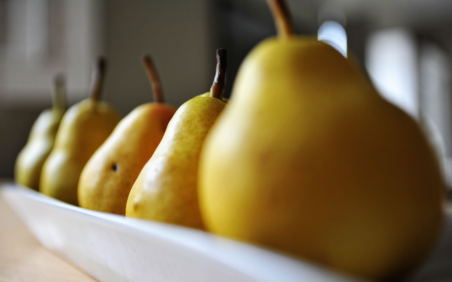 client: still life pears